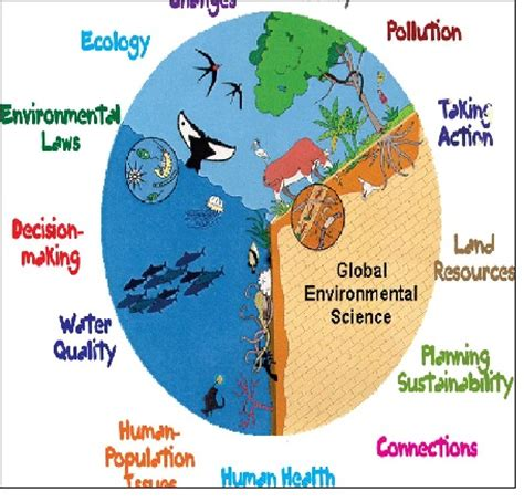 Research proposal environmental science
